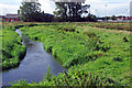 SJ9123 : River Sow, Doxey Marshes by Stephen McKay