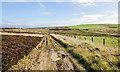NZ0746 : Moorland beside rough road by Trevor Littlewood