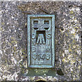 J0220 : Flush Bracket, Slieve Gullion Triangulation Pillar by Rossographer