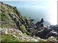 NX8248 : Sea cliffs below Balcary Hill by Oliver Dixon