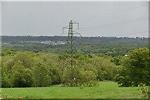 TQ5743 : Pylon near Nightingale Farm by N Chadwick