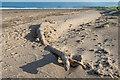 NU1338 : Log on the beach by Ian Capper