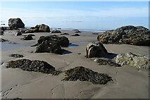 NX1189 : Whilk Isle by Anne Burgess