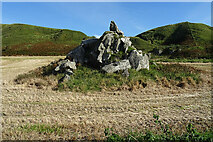 NX1390 : Intrusive Rock by Anne Burgess