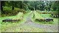 NM9531 : Path junction, Fearnoch Forest by Mick Garratt