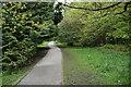 SE2854 : Harrogate Link, The Pinewoods by N Chadwick