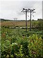 NR8490 : Electricity transmission line by Mick Garratt