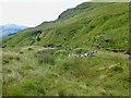 NN2806 : Ruined sheepfold by Mick Garratt