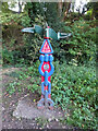 SO8304 : National Cycle Network signpost, Dudbridge Junction by Mr Red