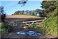 SW7027 : Farmland near Gweek by Des Blenkinsopp