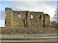 TR1457 : Canterbury Castle by Colin Smith