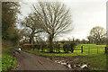 SE3260 : Low Moor Lane by Derek Harper