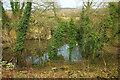 SE3459 : Lingerfield Quarry by Derek Harper