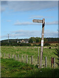 NJ4556 : Waymarker at Drodland by Anne Burgess