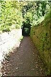 TQ6045 : Sunken path by N Chadwick