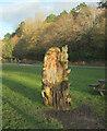 SE2954 : Carved throne, Valley Gardens by Derek Harper