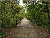 SK5852 : Bridge in Sansom Wood – 1 by Alan Murray-Rust