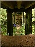 SK5852 : Bridge in Sansom Wood – 4 by Alan Murray-Rust