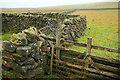 SE1364 : Ruin by Peat Lane by Derek Harper