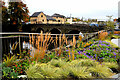 H4572 : Flower beds, Strule Arts Centre, Omagh by Kenneth  Allen