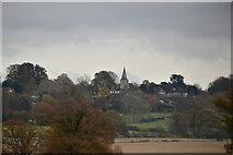 TQ9245 : Church of St Nicholas, Pluckley by N Chadwick