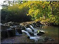 SK6273 : The weir at Clumber Bridge by Graham Hogg