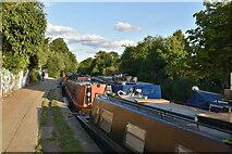 TQ3583 : Narrowboat, Regent's Canal by N Chadwick