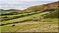 NT2264 : Shooting range, Castlelaw Hill by Mick Garratt