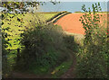 SX8563 : Aptor Lane by Derek Harper