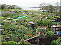 NU0052 : Allotments on the edge of Berwick-upon-Tweed by John H Darch