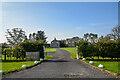 NZ1496 : Longhorsley : Swanhill by Lewis Clarke