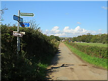SZ5085 : Public bridleway near Newport by Malc McDonald