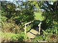 SZ5284 : Public footpath near Merstone by Malc McDonald