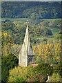 SO7142 : The spire of Coddington church by Philip Halling