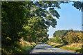 NU0124 : Lilburn : A697 by Lewis Clarke