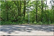 TQ6243 : TWCW signpost, Dislingbury Rd by N Chadwick