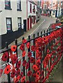 SE3171 : Some Ripon poppies by Graham Hogg
