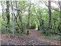 SZ5093 : Public footpath near Cowes by Malc McDonald