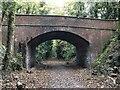 SU5174 : Track through the bridge by Bill Nicholls