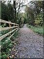 SU5276 : New path to Hermitage by Bill Nicholls