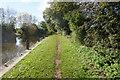 SU5494 : Thames path towards Culham by Ian S