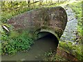 SK7129 : Smite aqueduct, Grantham Canal, Hose – 1 by Alan Murray-Rust