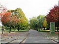 TQ3377 : Autumn colours in Burgess Park by Malc McDonald