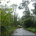 ST6505 : Sandy Lane blocked by fallen tree by David Smith