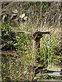 SJ9790 : Etherow Country Park - sluice valve by Chris Allen