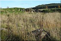NJ5145 : Rock Outcrop by Anne Burgess