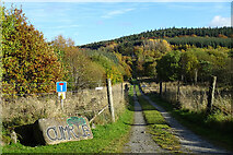 NJ5144 : Road to Cumrie Farm by Anne Burgess