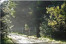 NJ5042 : Gated Road by Anne Burgess