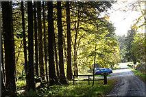 NJ5041 : Bin Hill Forest car park by Anne Burgess