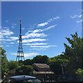 TQ3371 : TV transmitter, Crystal Palace Park, south London by Robin Stott